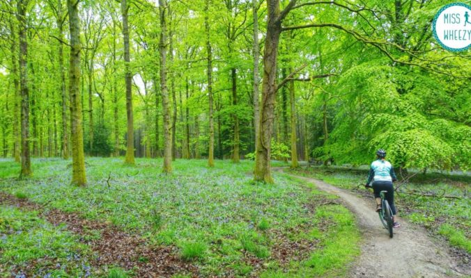 Camping and mountain biking in the Forest of Dean