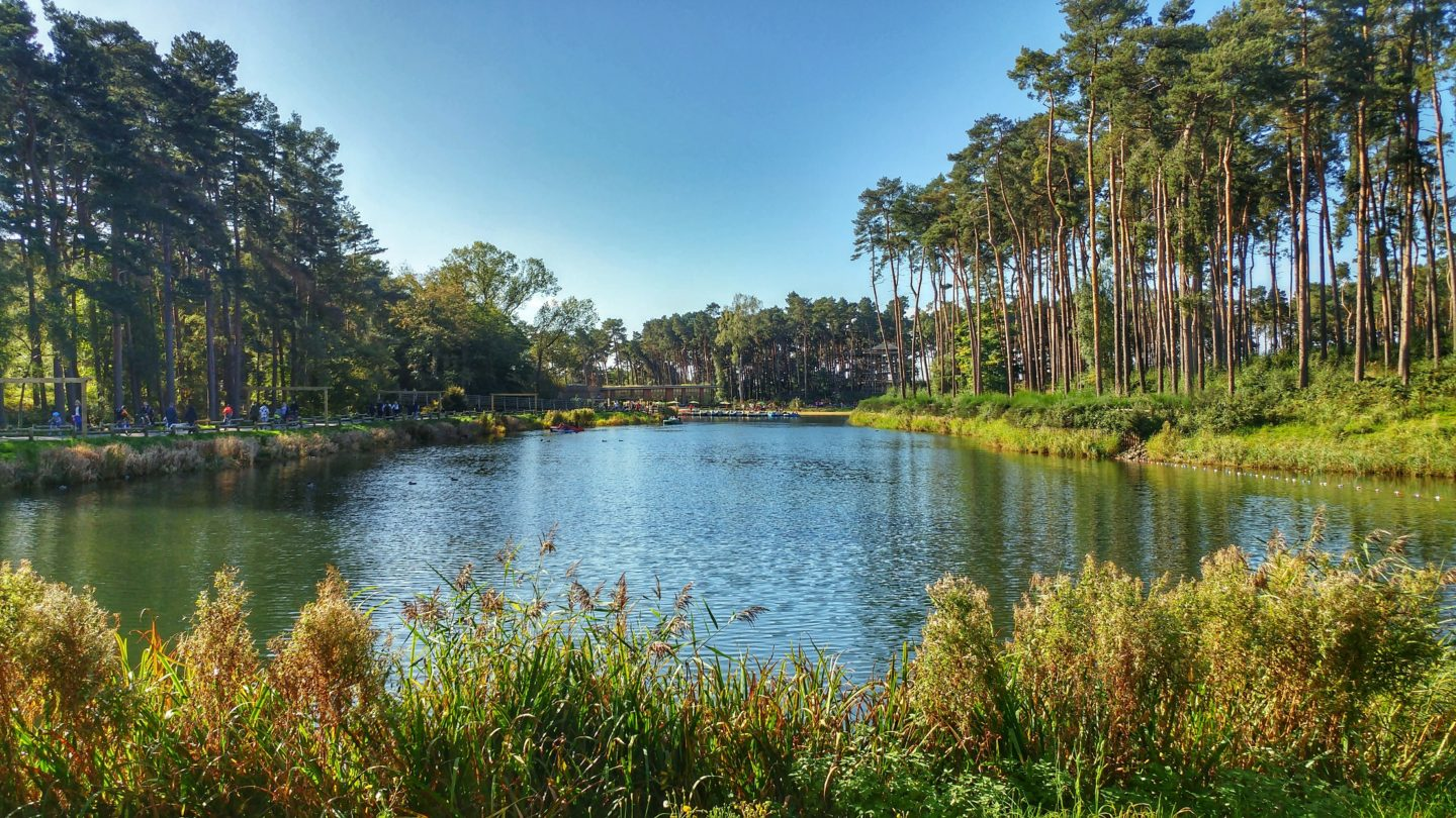 A weekend at CenterParcs Woburn Forest