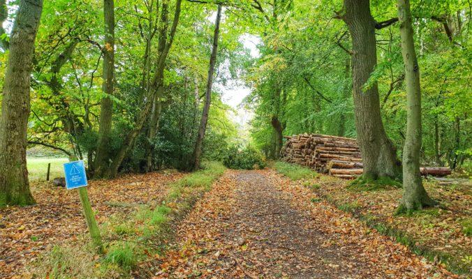 Maverick Oxfordshire Trail Race