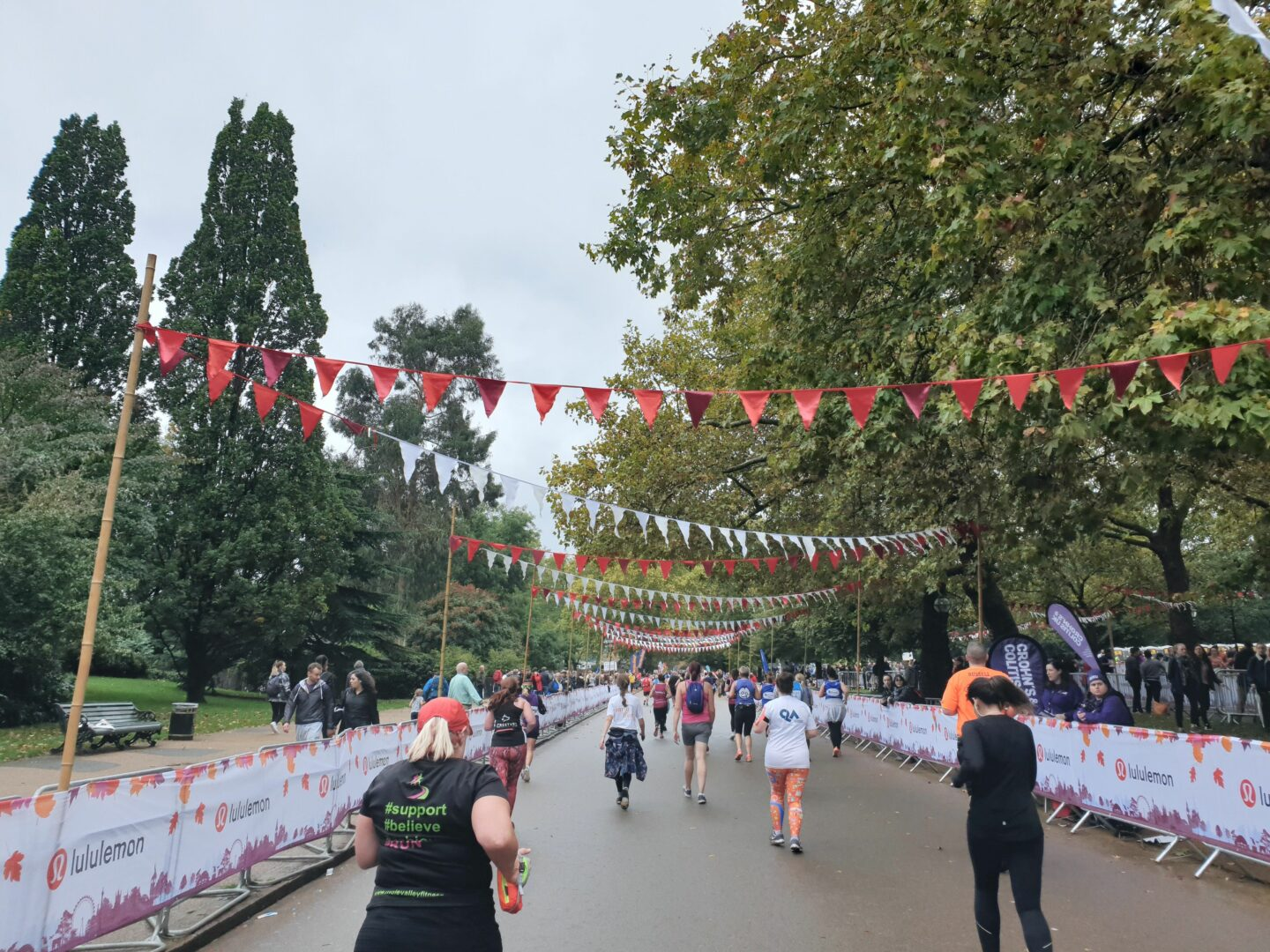 Flags lining the route through Hyde Park