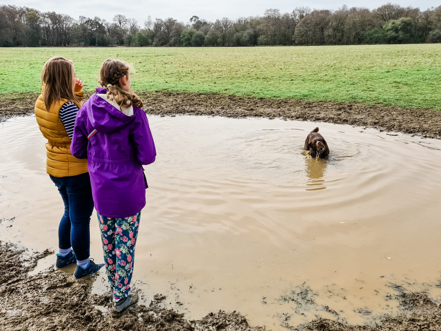 two women looking at a dog in a large muddy puddle